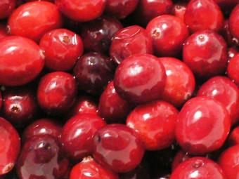Áfonya 'Cranberry' változat